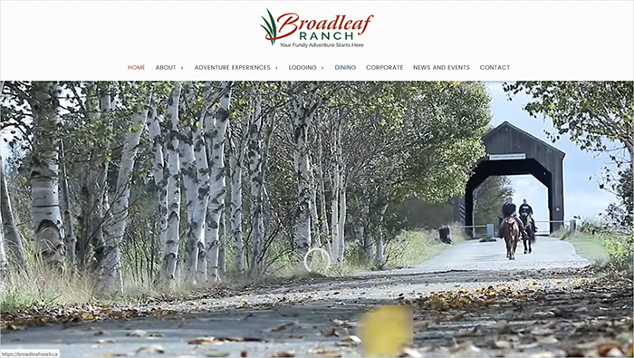 Broadleaf desktop view